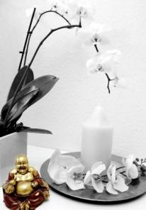 Esthetic for You Wellness Oase Lilienthal-Worphausen